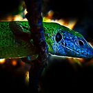 Green Fractal Dragon by Atılım GÜLŞEN