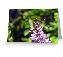 Droopy Wings Greeting Card