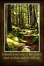 Commit Your Way to the Lord (Greeting Card) by Tracy Friesen