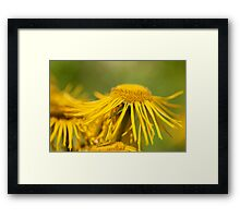 Yellow Flowing Floral Framed Print
