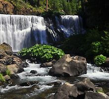 McCloud River Falls, The Middle Falls by Bob Moore