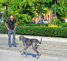 Man and Dog by Imagery