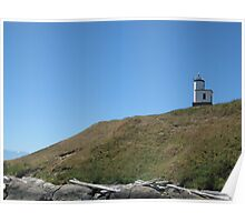 Cattle Point Poster