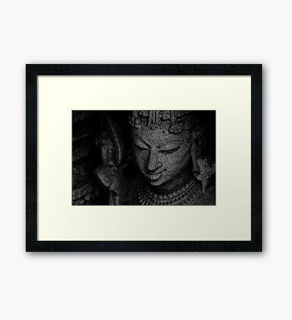 The Digpaal - Guard of Direction - B&W Framed Print