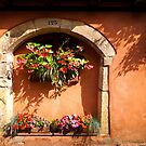 Eguisheim The Beautiful by Jacinthe Brault