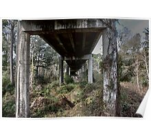 under the overpass Poster