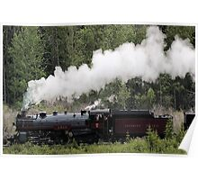 Whoo Hooo ---- #2816 Steam  Engine To Canmore Poster