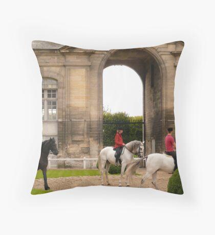 Rider-Living Horse Museum, Chantilly, France Throw Pillow