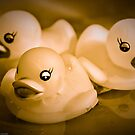 Monochromatic Ducks by Susana Weber