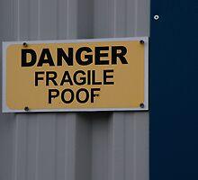 Fragility by Nik Watt