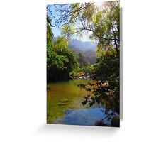 Sierra Madre - rivers and jungle - rios y selva Greeting Card