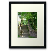 Step Over  Framed Print