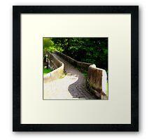 Step over the bridge  Framed Print