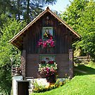 An Alpine Austrian Cottage. by Lee d'Entremont