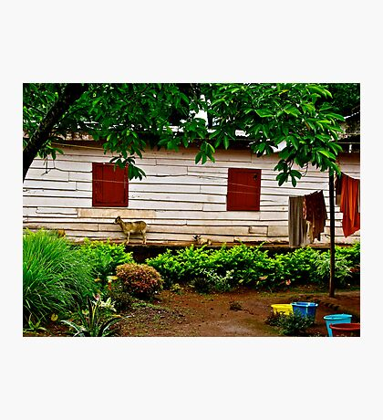 Cameroon House Photographic Print