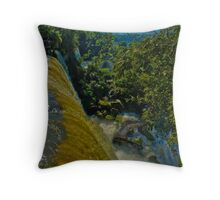 Looking down On Iguassu Throw Pillow