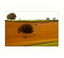 Farm Land, South Hams Art Print