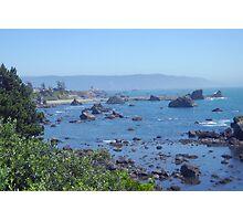 Beachin Bushes Photographic Print