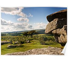 Two Trees at Combestone Tor Poster