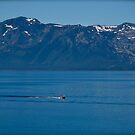 The Big Blue...that is Lake Tahoe in the Summer. by Helen Vercoe