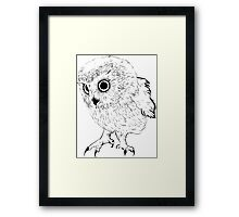 Owl hand drawn Framed Print
