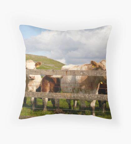 Cows Of Ireland - Ireland Throw Pillow