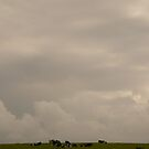 Big Sky Little Cows - Ireland by Jenny Hambleton