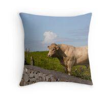 Bull - Ireland Throw Pillow