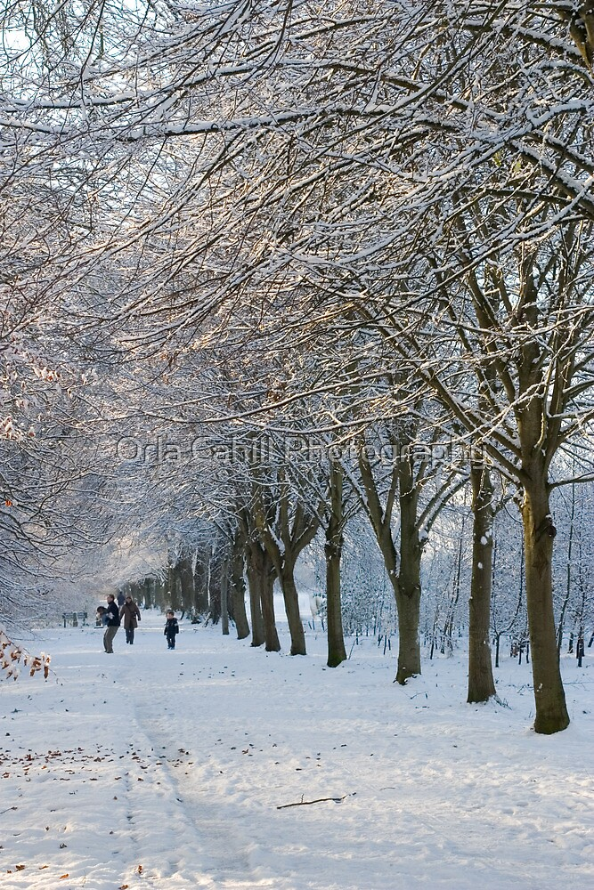 Let it Snow by Orla Cahill Photography