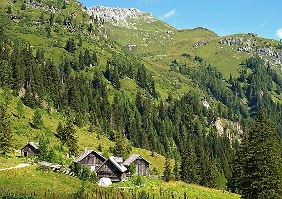 Alpine Cottages in Zederhaus, Austria by Lee d'Entremont