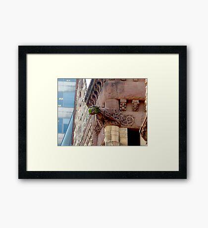 Old City Hall Gargoyle Framed Print