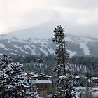 Breckenridge by Nycon360