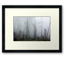 In the stillness, Only Silence Framed Print