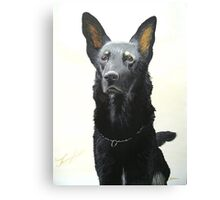 German Shepherd 1 Canvas Print