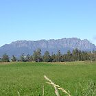 Mount Roland in Tasmania by Elisabeth  Cannell