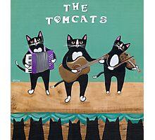 The Tomcats Photographic Print