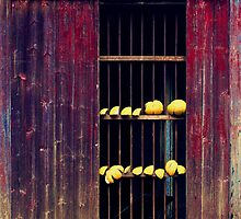 Lemony by chantilly-dream