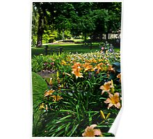 Flowers in the Park Poster