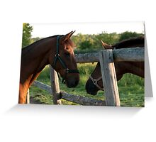 Checking Things Out!! Greeting Card