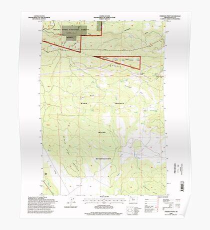 USGS Topo Map Oregon Foreman Point 279918 1996 24000 Poster