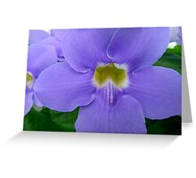 Blue Sky Vine Greeting Card