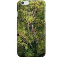 One tree with branches and leaves iPhone Case/Skin