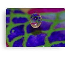 Beautiful Colorful Waterdrop Canvas Print