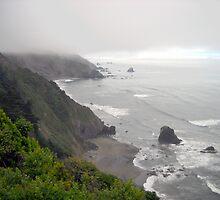 Foggy Coastline by marilyn diaz