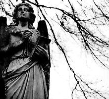 so let it be written angel by nessbloo