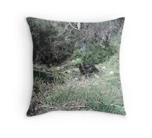 A Tree Stump On The Hillside Throw Pillow