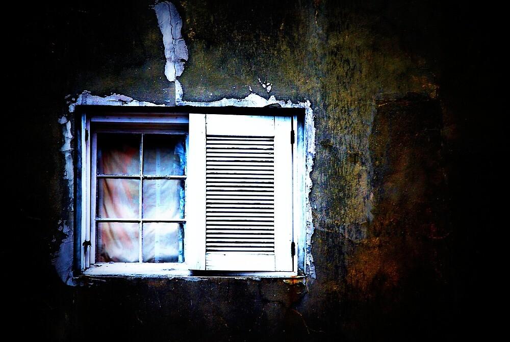 window #3 by nessbloo