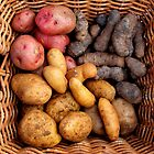 Organic Potatos by Janie. D
