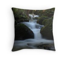CementCreek Throw Pillow