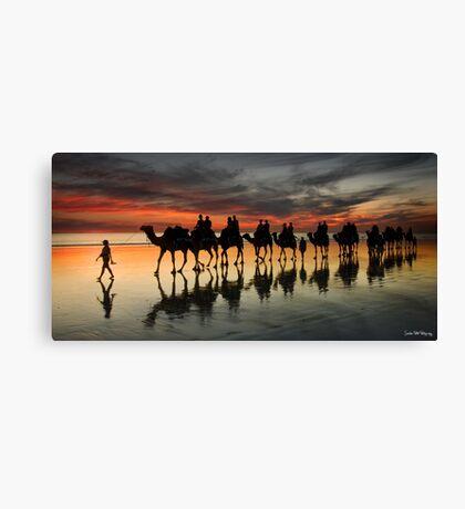 Cable Beach Camel Train Canvas Print